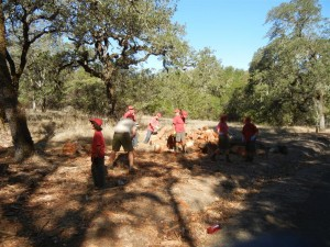 Napa Camp Out-Mt. St. Helena Hike 0049