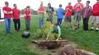 Going over tree planting root ball too low Oct2015a