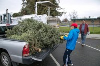 Christmas Tree Recycling December 0014